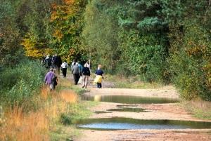 View the album Autumn Walk 2014